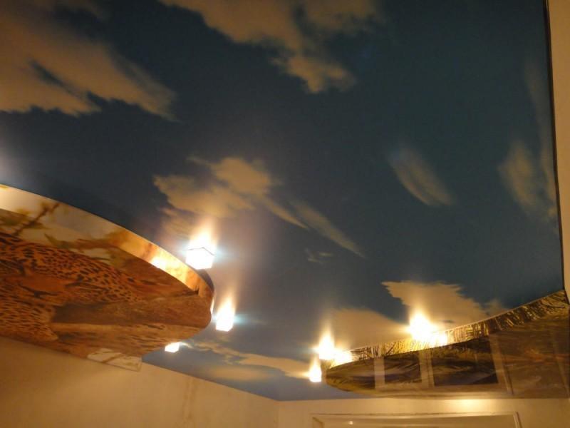 библиотеке также натяжные потолки фото петропавловск камчатский поэтому домашняя