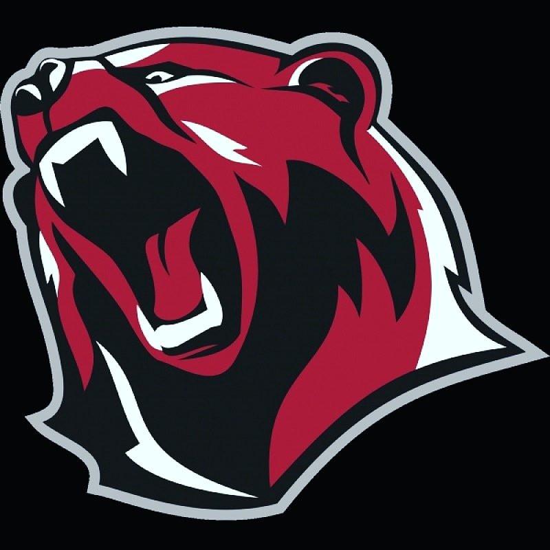Картинки медведей кланов